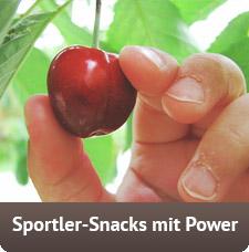 Dein Snack-Generator